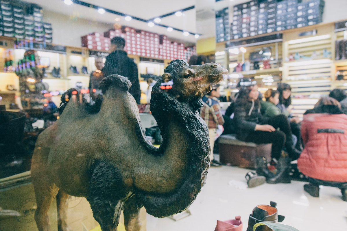 The World's Market: Arab Migrants in the City of Yiwu